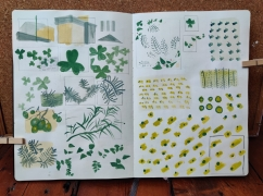 Sketchbook page held open with wooden pegs in front of a corkboard. The page has green and yellow patterns covering it.