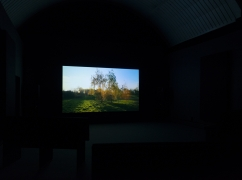 Image of trees in a landscape projected on a screen with a black background.